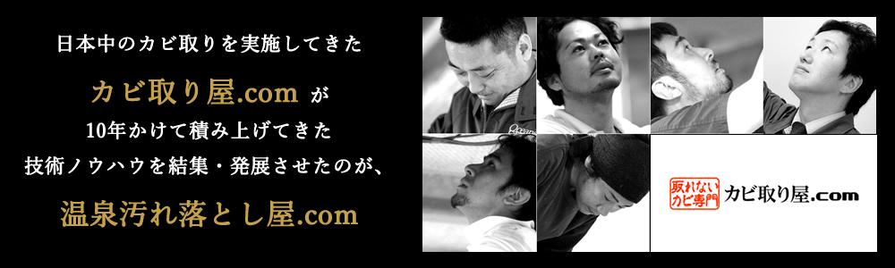 カビ取り屋.com